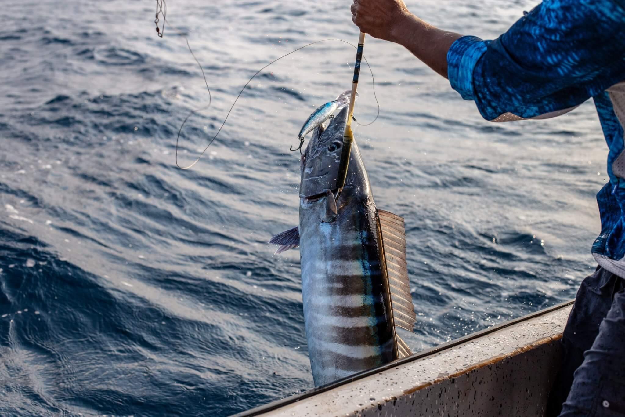 Deep Water Fishing in Belize